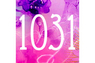 1031(One zero three one)