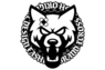XCROSS DASH DESIGN
