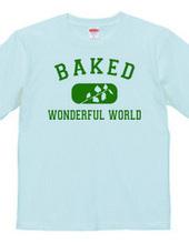 WONDERFUL WORLD 03