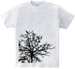 Birds singin' in the tree.(Black Ed