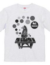 DJ Bear
