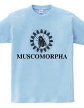 MUSCOMORPHA2