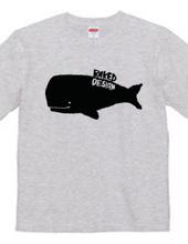 whale 01