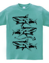 JAWS CRASH BONES
