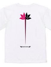 蓮華‐lotus flower‐