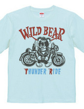 motorcycle wiid bear