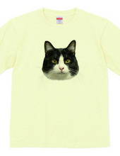 猫「カールの顔」