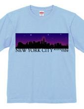 NYC Midnight view