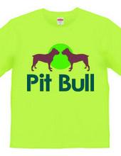 Pit bull02