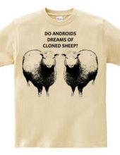 Cloned Sheep