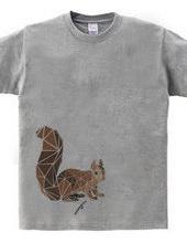 Polygon squirrel