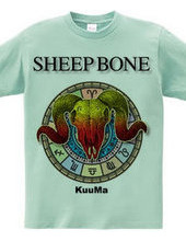 SHEEP BONE