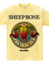 SHEEP BONE