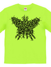 new-butterfly