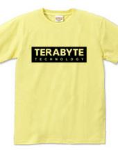TERABYTE Technology