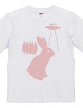 Rabbit & UFO