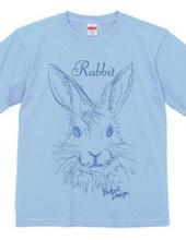 rabbit 02