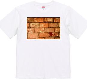 072-bricks2