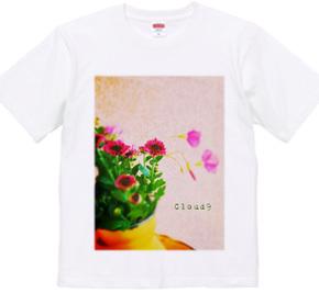 the flowers of romansk