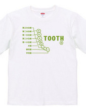 TOOTH *歯*・片面