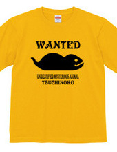 wanted! tsuchinoko