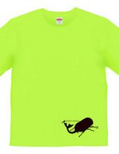鳥とカブト虫