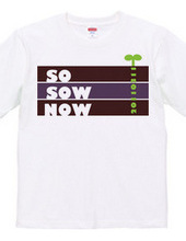 SO SOW NOW 20110311