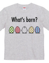 What's born?