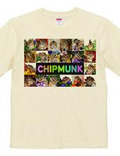 (両面印刷) シマリス - CHIPMUNK (5)