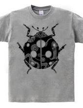 t.ladybug