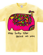 ★May lucky  star  shine  on  y