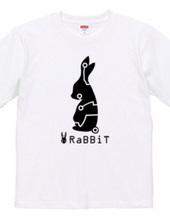 x.rabbit