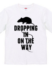 DROPPING