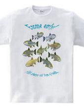 FISH_6C