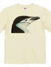 ペンギン2011