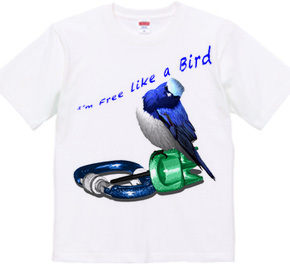 I'm free like a bird.
