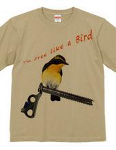 i'm free like a bird-2.