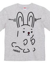 rabbit(兎)