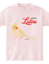 cockatiel bird lutino