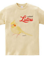 cockatiel bird lutino