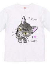 グレーのキジ猫