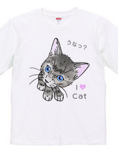 グレーのキジ猫 2