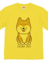 SHIBAINU!