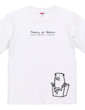Theory of Nature