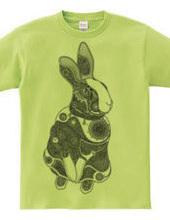 t.rabbit