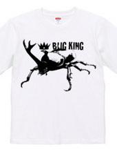 BUG KING 2