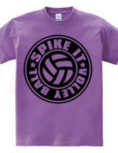 Spike_It_Volleyball