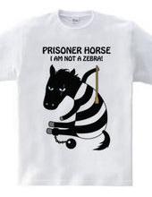 prisoner horse  シマウマじゃないよ!