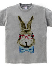 Rabbit in glasses