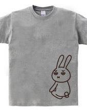 正座ウサギ